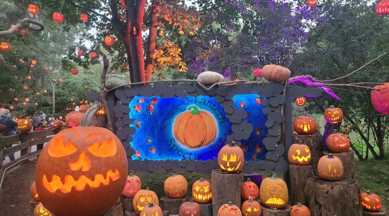 Music Throughout the Ages: This Year's Jack-O-Lantern Spectacular